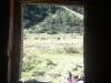 Kuh-Aussicht vom Plumpsklo